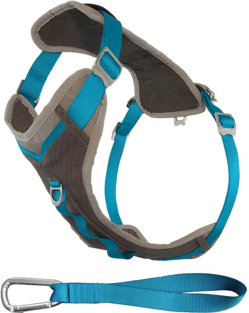 Kurgo Journey Adventure Dog Harness