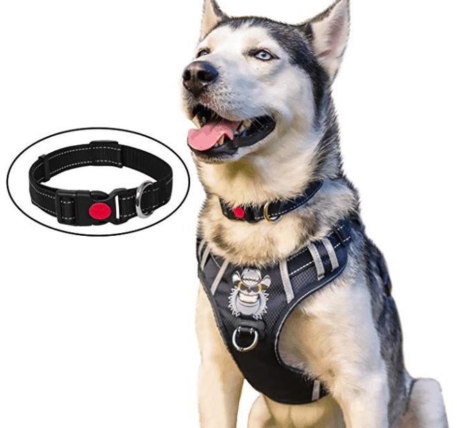 Babyltrl No-Pull Big Dog Harness