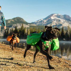 Ruffwear Approach Pack (Dog)