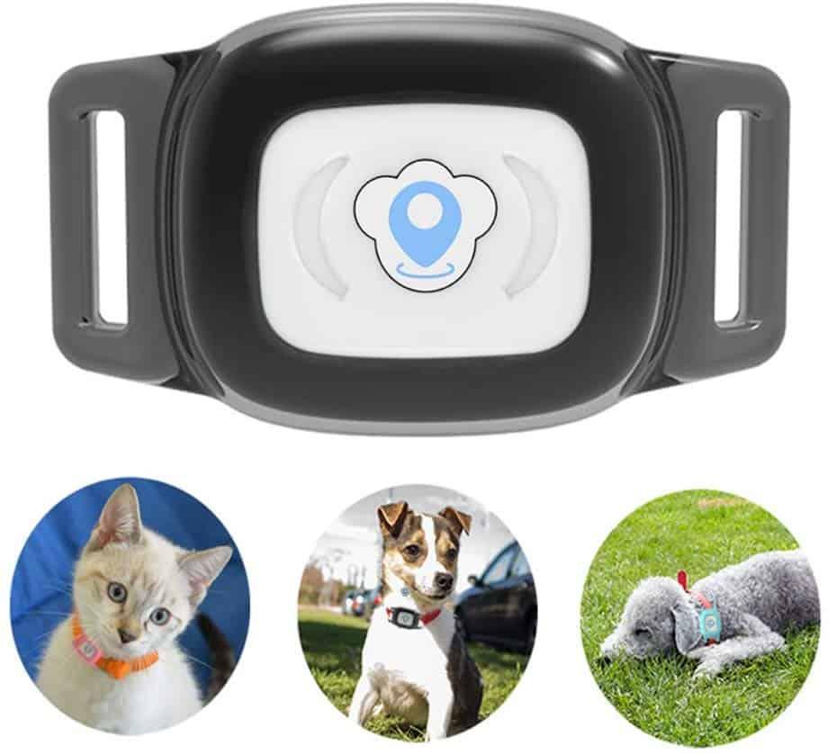 Bartun GPS Pet Tracker
