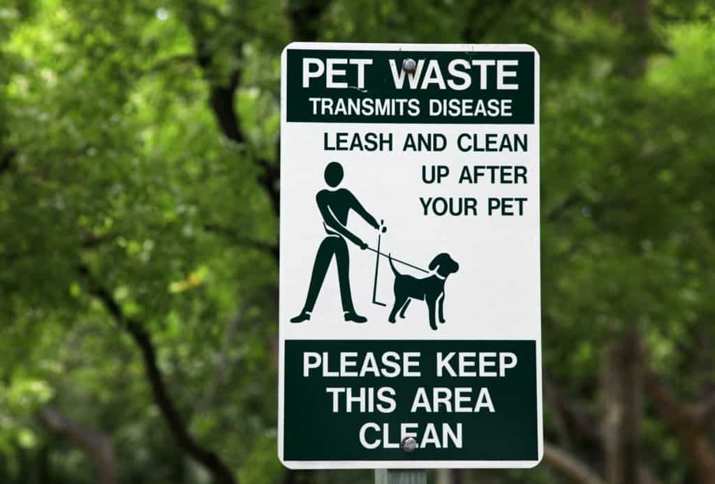 Leash and Clean the Dog Poo