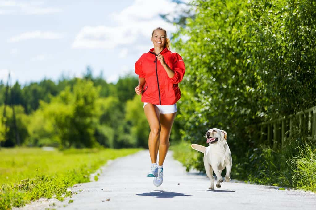 Train with Dog before Going for a Hike