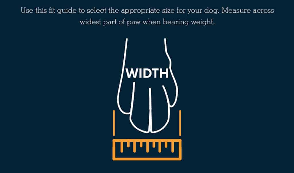 How to Measure Dog Paws