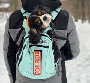 Dog Backpack Carrier