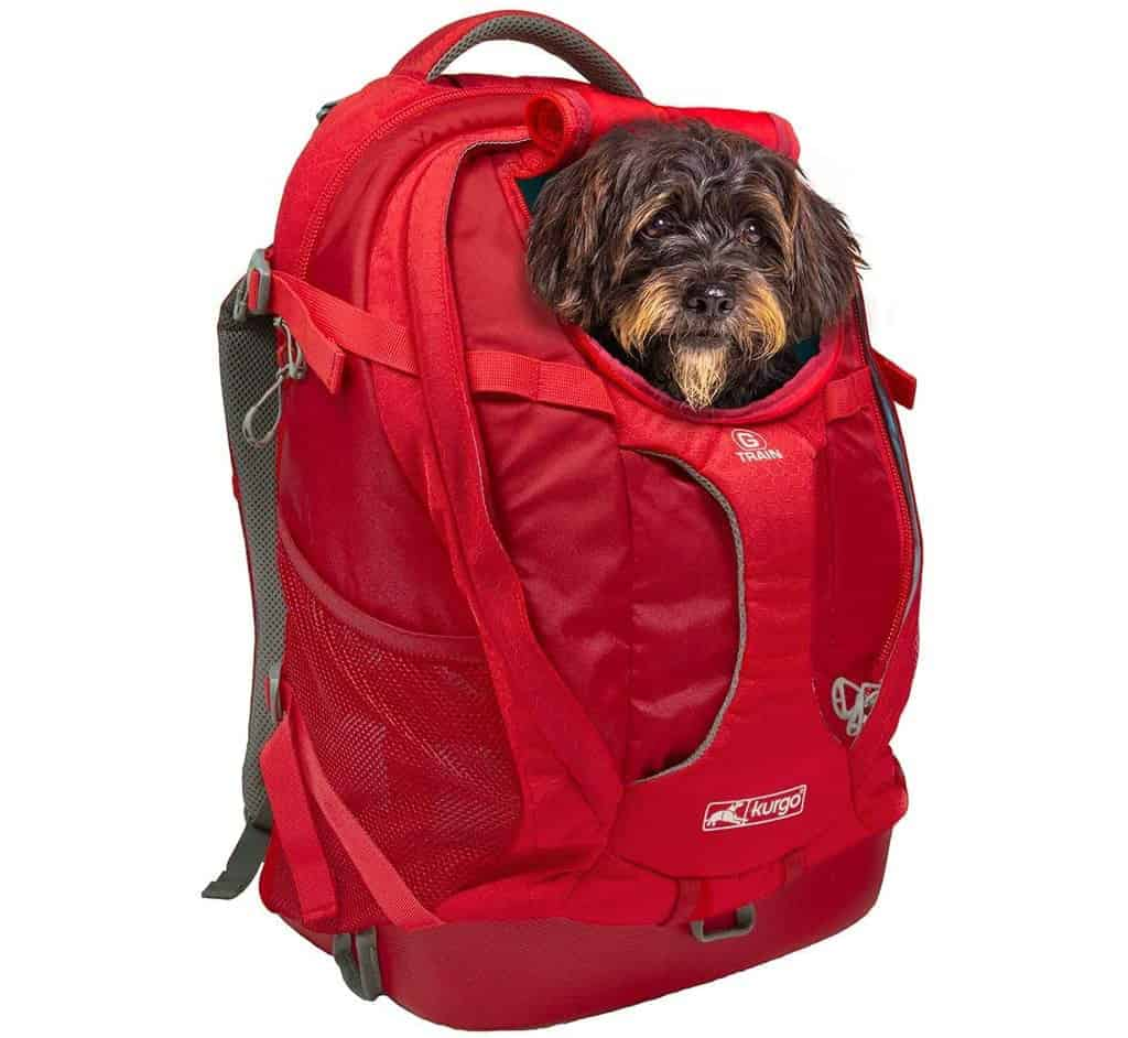 Kurgo G-Train Pet Backpack Carrier
