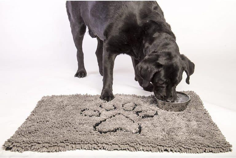 Best Dog Doormat