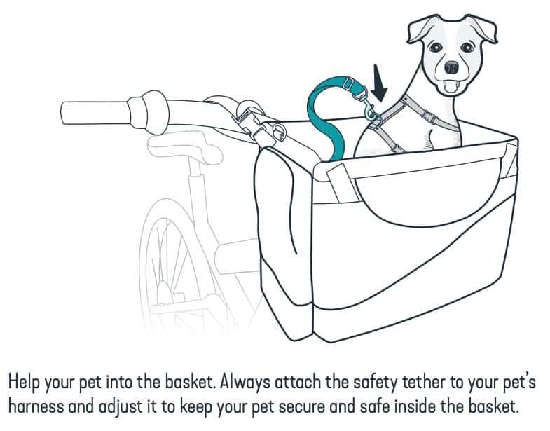 Dog Bike Basket Safety Tips - Attach to Harness