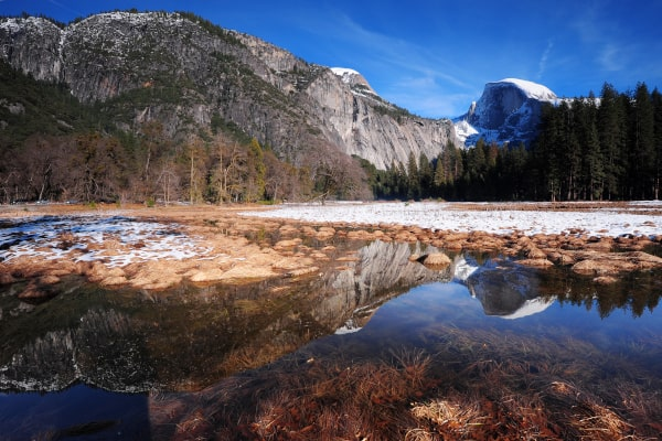 Dog Friendly Trail in Yosemite
