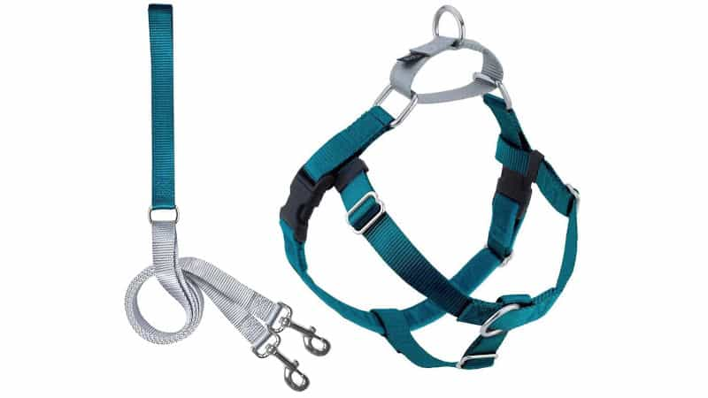 2 Hounds Design Freedom No-Pull Dog Harness