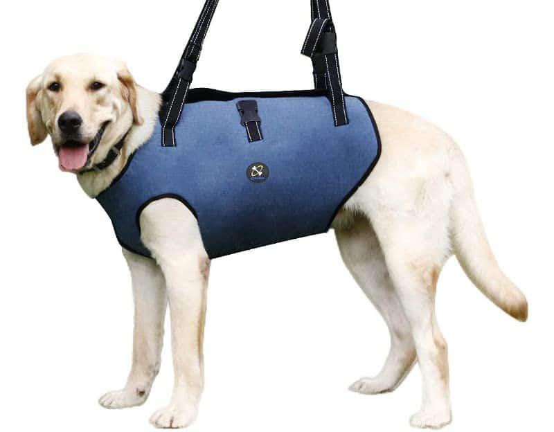 COODEO Dog Lift Harness