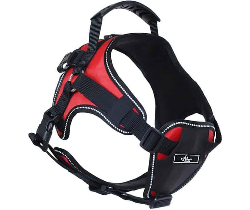 Doggie Stylz Multi-Functional Full-Body Lifting Dog Harness Vest