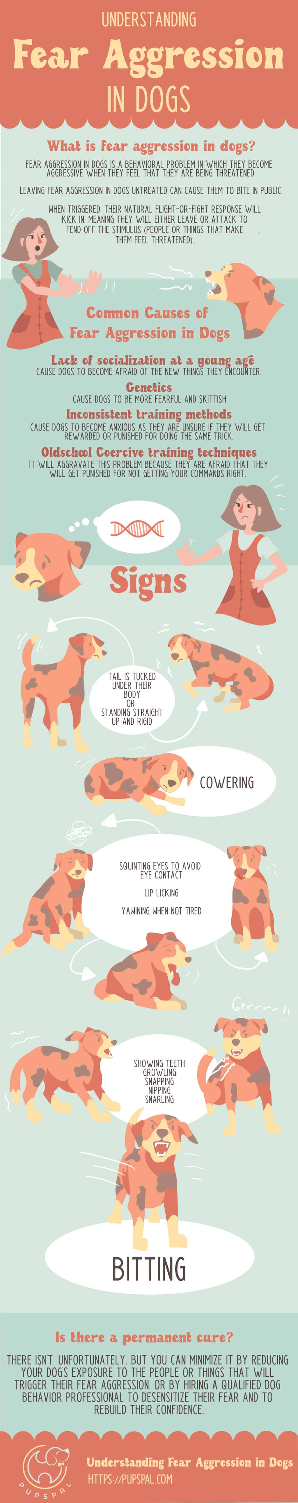 Fear Aggression in Dogs Infographic