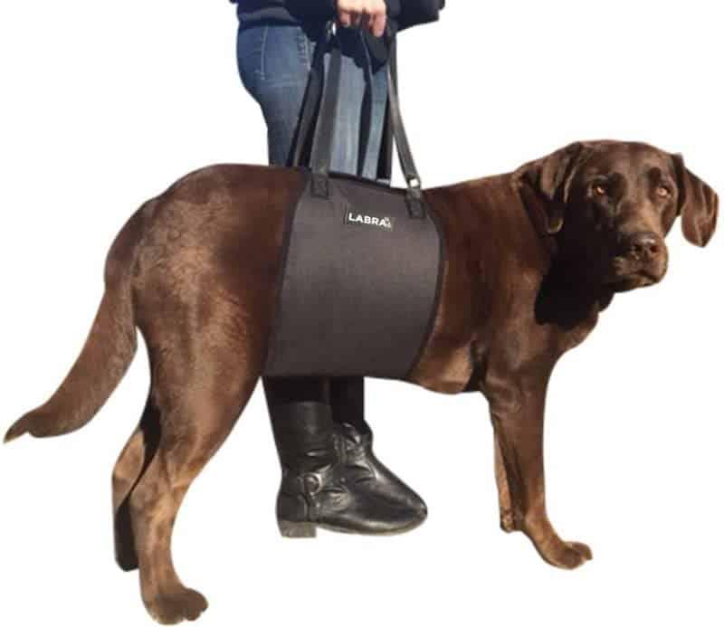 Labra Veterinarian Approved Dog Sling Lift