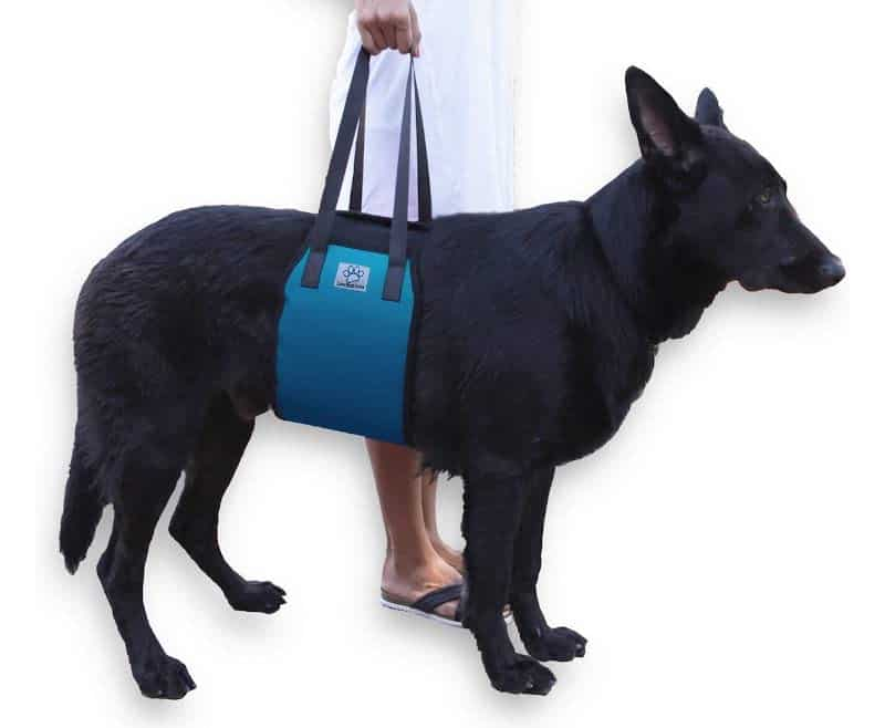 Love Pets Love Vet Approved Dog Lift Support Harness