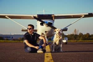 Air Traveling with Dog