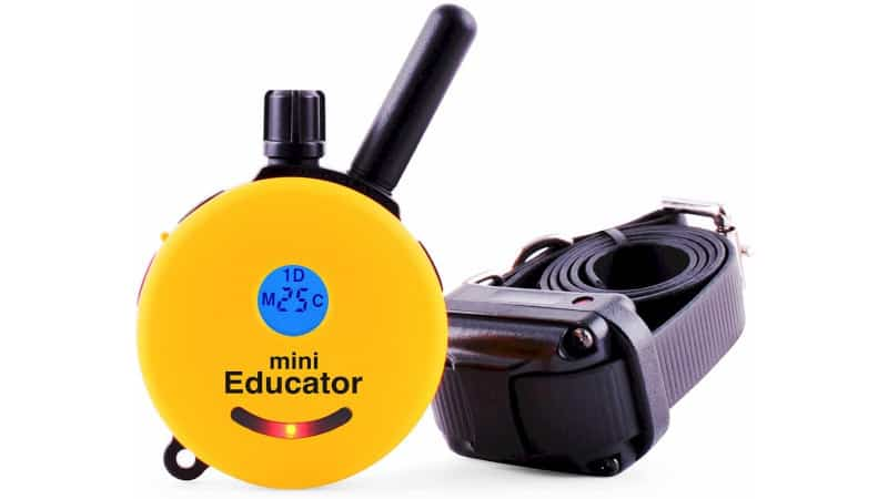 Educator E-Collar ET-300