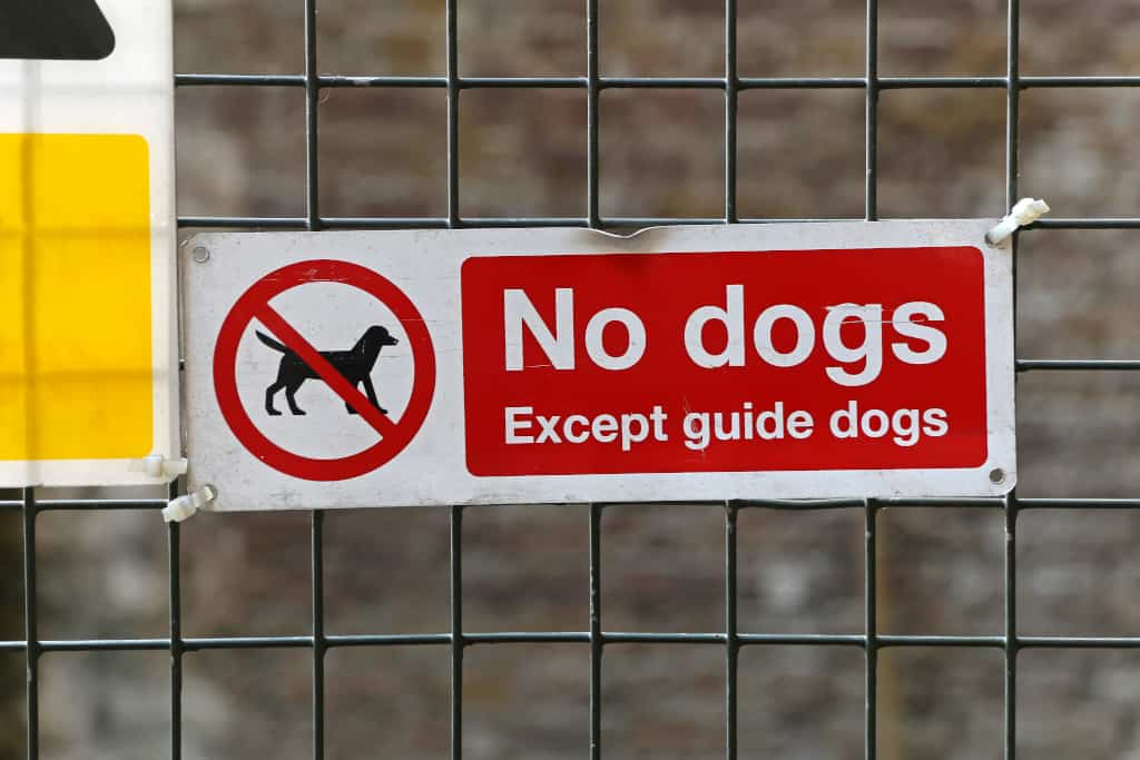 Guide Dog Only