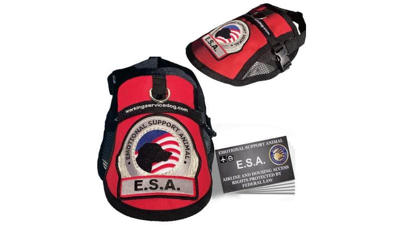 Working Service Dog Premium Emotional Support Dog ESA Mesh Vest