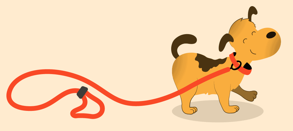Keep Your Dog On a Leash