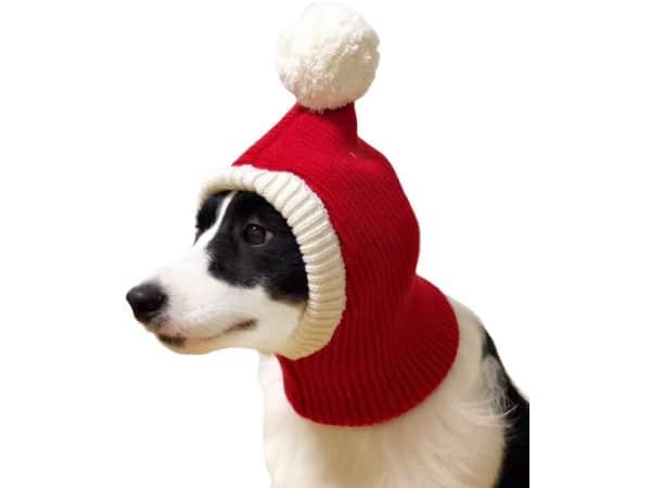 NACOCO Christmas Dog Hat