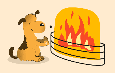 Protect Your Dog from Heat Source