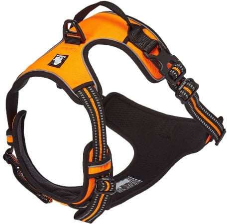 Chai's Choice Front Range Harness