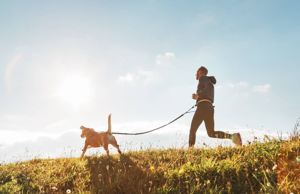 Best Hands Free Dog Leash - Canicross Exercise