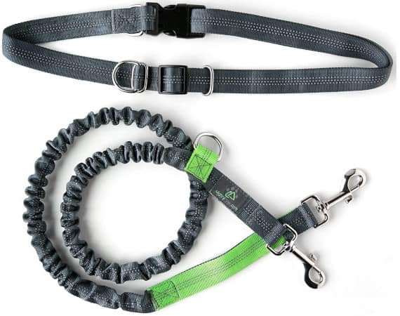 Mighty Paw Hands Free Dog Leash