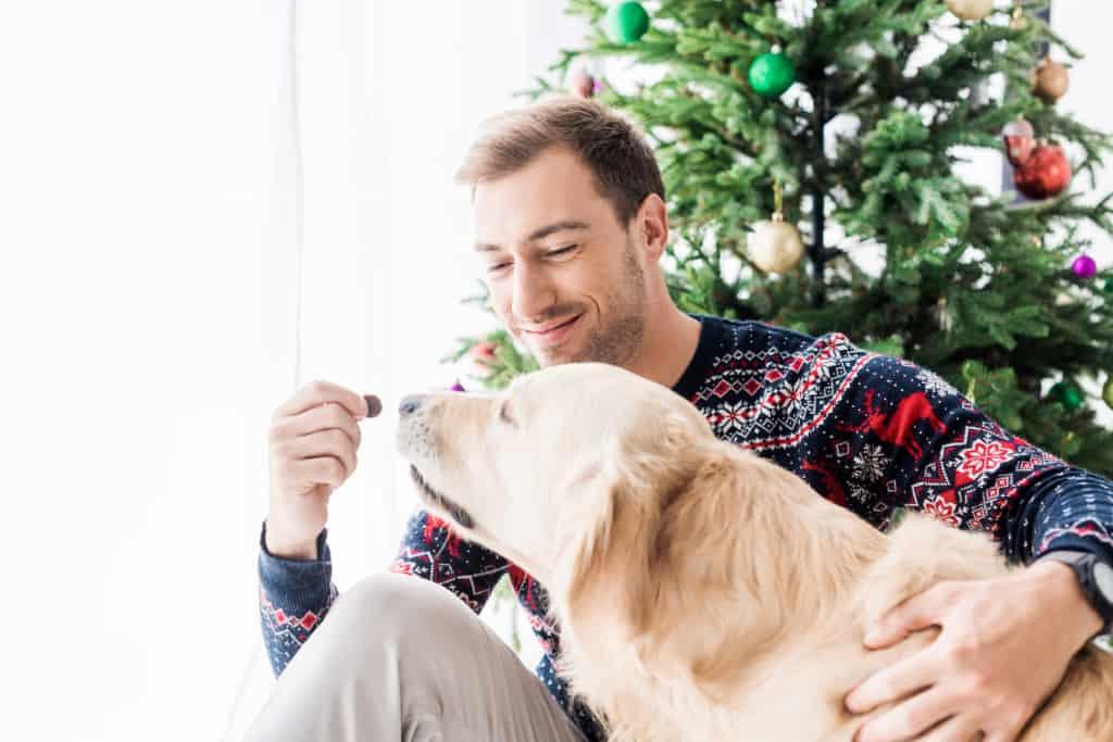 A Man is Rewarding His Dog a Treat