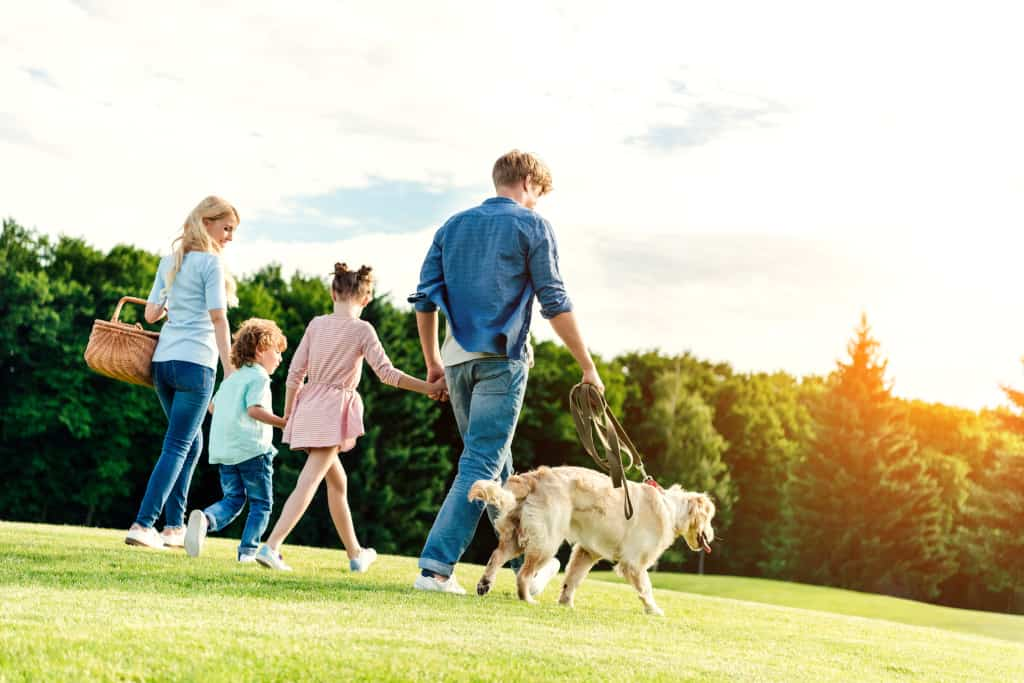 A Family is Walking Their Dog