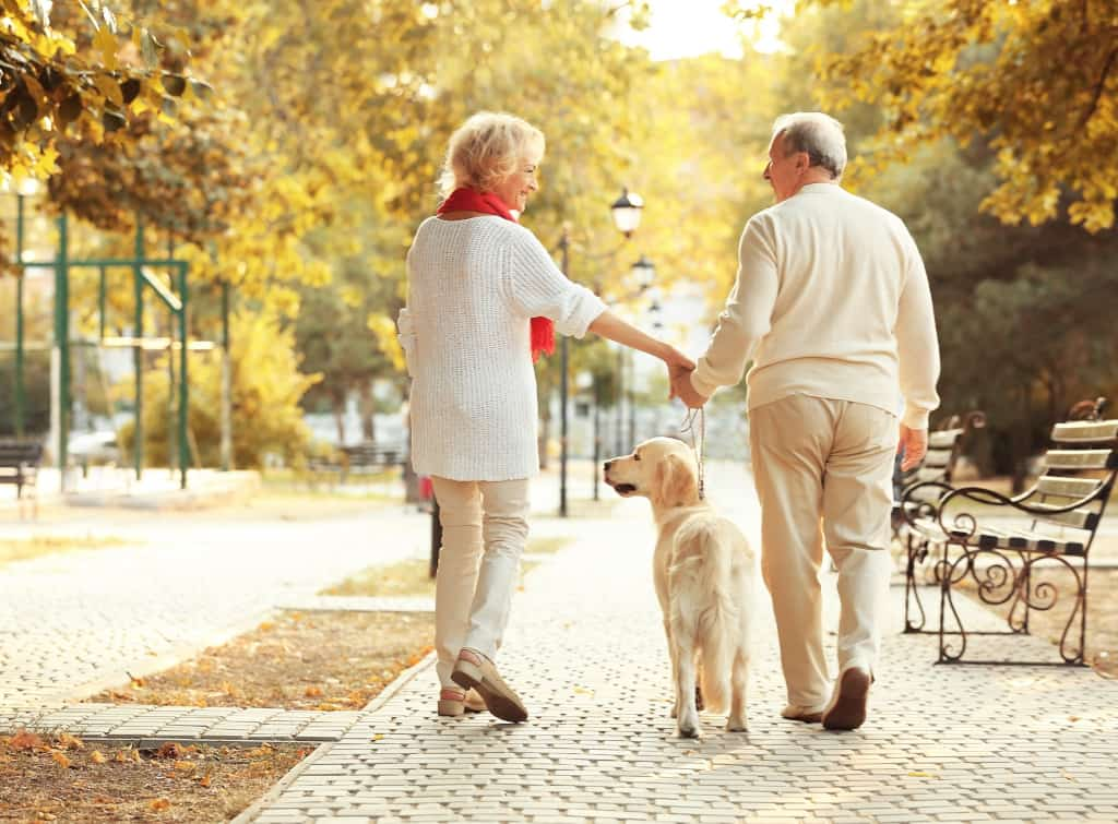 Senior Couple Walking Their Dog in a Park