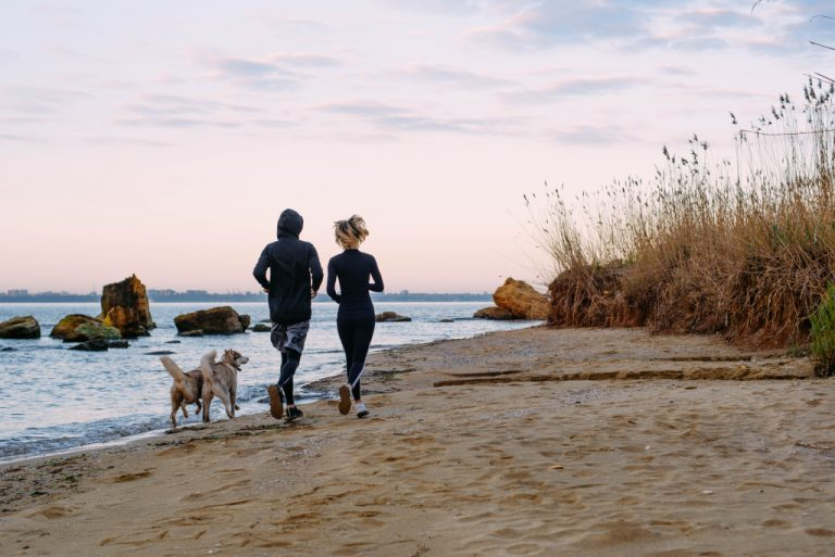 How Far is Too Far to Run With Your Dog