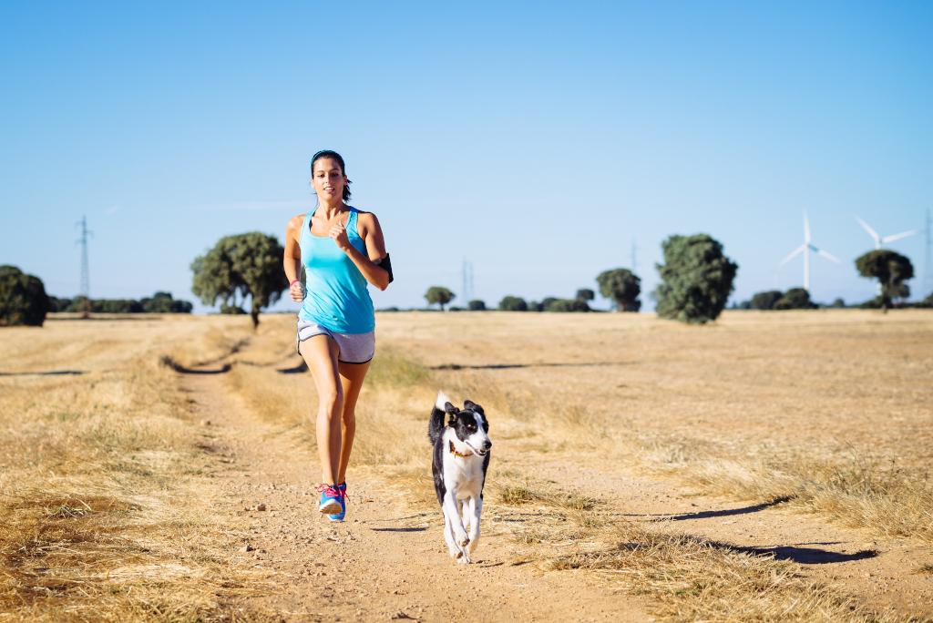 Off-Leash Running Hiking Dog Breeds