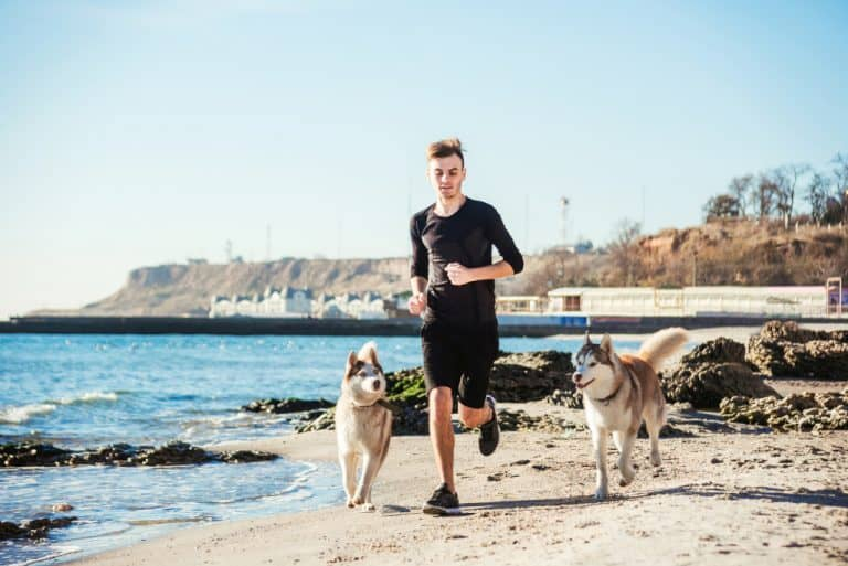 Run with Two Dogs