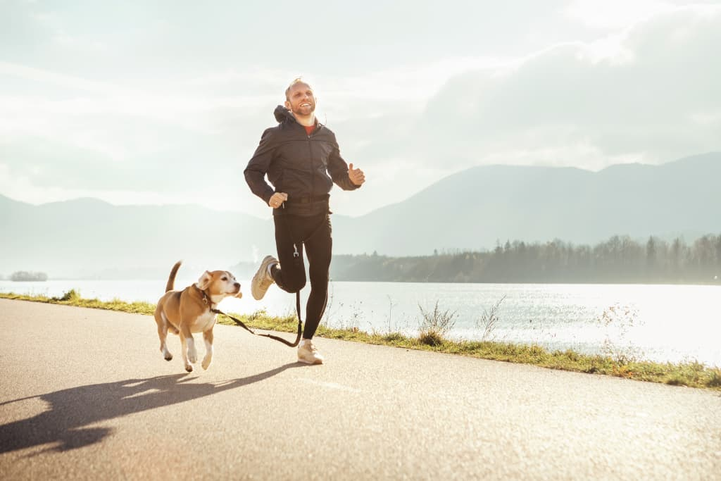 Small Dog Breeds for Running
