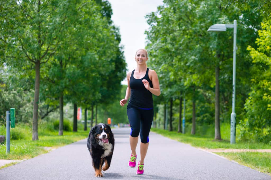 Train Your Dog to Run Off-Leash