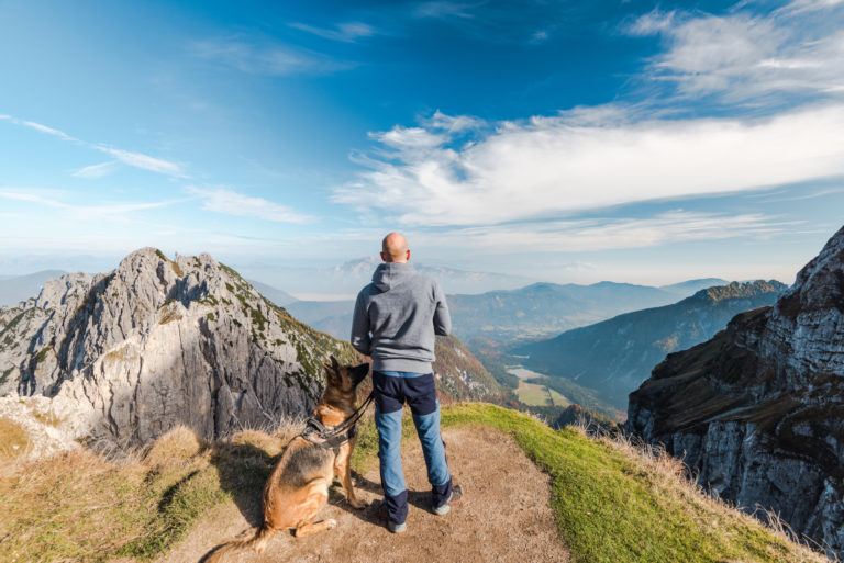Dog Breeds for Hiking Protection
