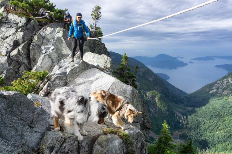 Dog Edge Cliff Hiking