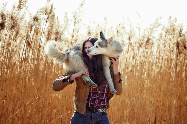 A Husky on a Woman's Shoulders