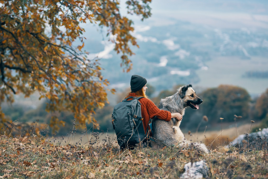 Hiking with Senior Dogs