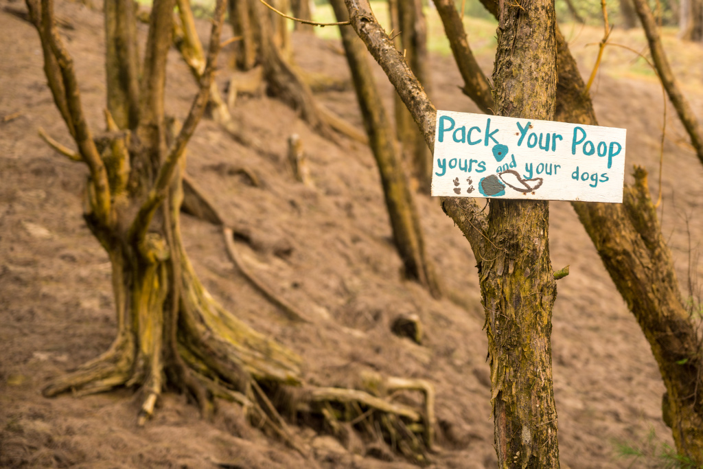Pack Your Dog Poop While Hiking